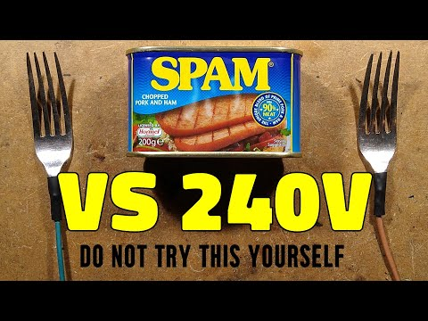 Spam versus 240V  (the place was stinking for days)